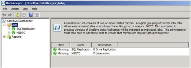 Figure 8 – After adding the second Job for the MSDTC resource